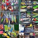 Открываем рыболовный магазин: пошаговая инструкция