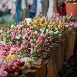 Как создать бизнес по выращиванию цветов?