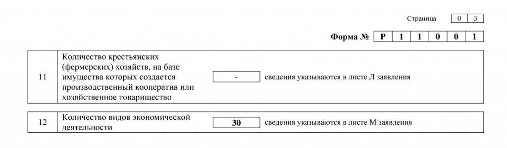 Страница 3 Форма № P11001