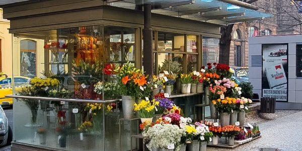 Как открыть свой цветочный магазин?